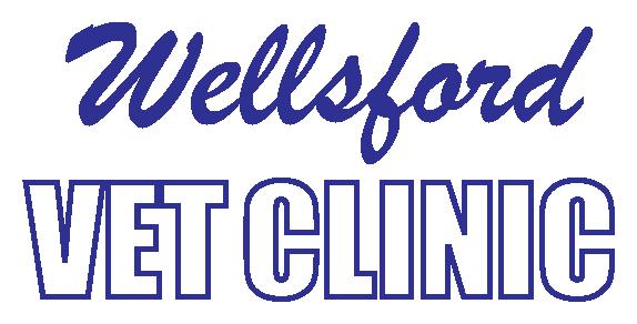Wellsford Vet